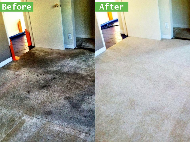 Carpet Cleaning Frequently Asked Questions In Rancho